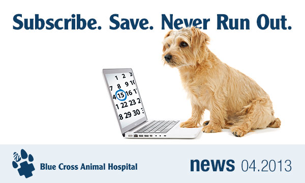 Subscribe. Save. Never Run Out. Blue Cross Animal Hospital Webstore Subscriptions.