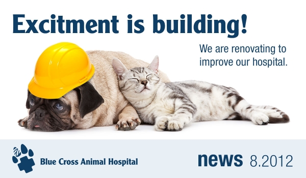 Excitement is Building! we are renovating to improve our hospital.