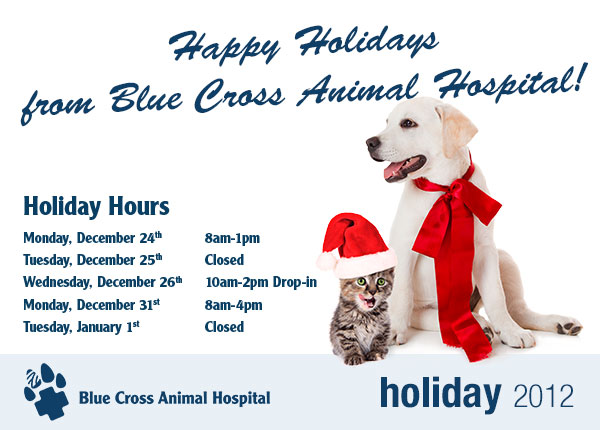 Happy Holidays from Blue Cross Animal Hospital. Link to our hours on the website.