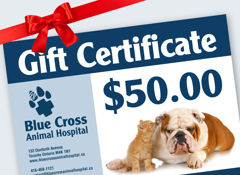 Our gift certificates are a popular favourite.
