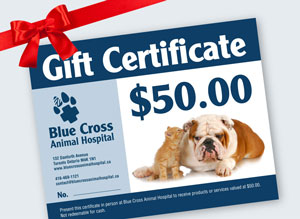 A Blue Cross Animal Hospital Gift Certificate.