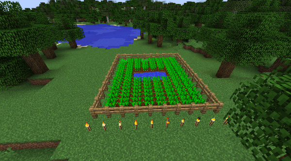Carrot Farm in Minecraft