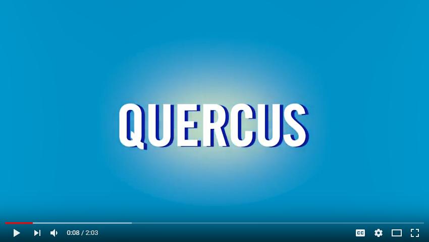 Quercus video