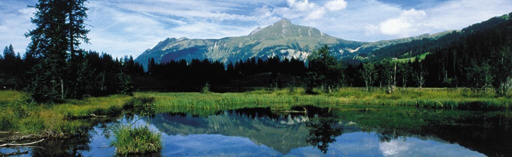 Lauenensee, Gstaad