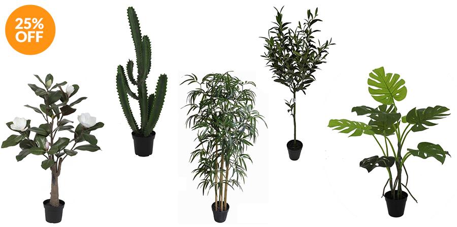 Faux Plants by Linens & More