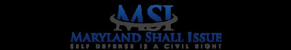 MSI_Logo_Header.png