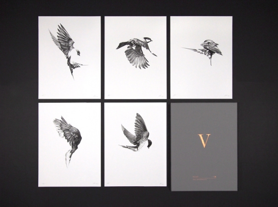 ShopVon www.shopvon.com — HelloVon — London based artist Von — Animal series — Birds — Mailing List