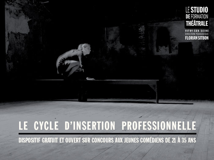 Le cycle d'insertion professionnelle évolue !
