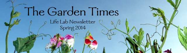 The Garden Times - Life Lab's Newsletter Spring 2014