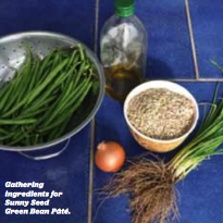 Recipe: Sunny Green Bean Pate