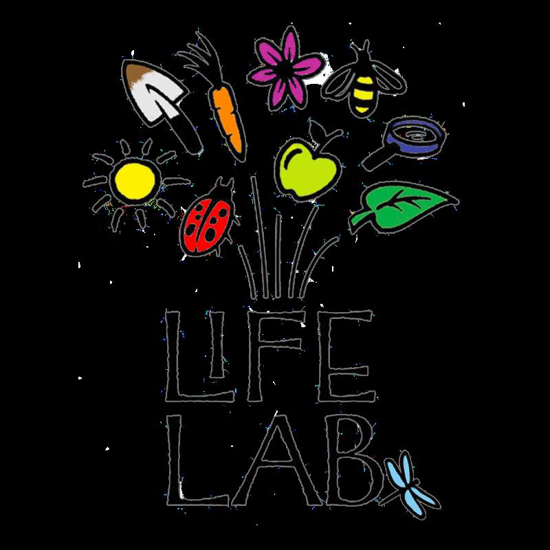 Pretty Life Lab Logo