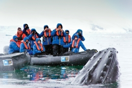 Antarctic Medical Conference