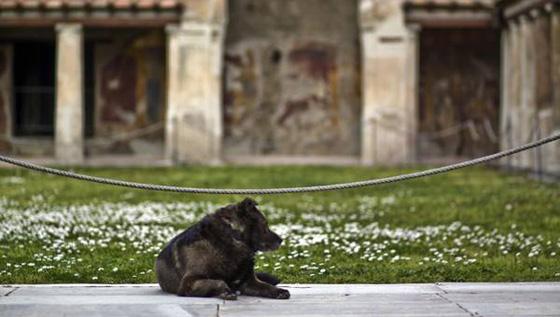 Chiusi a pubblico 44% siti archeologici sud Italia
