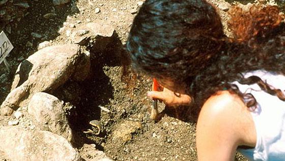 Death on the Dorset Ridgeway: a Viking Murder Mystery