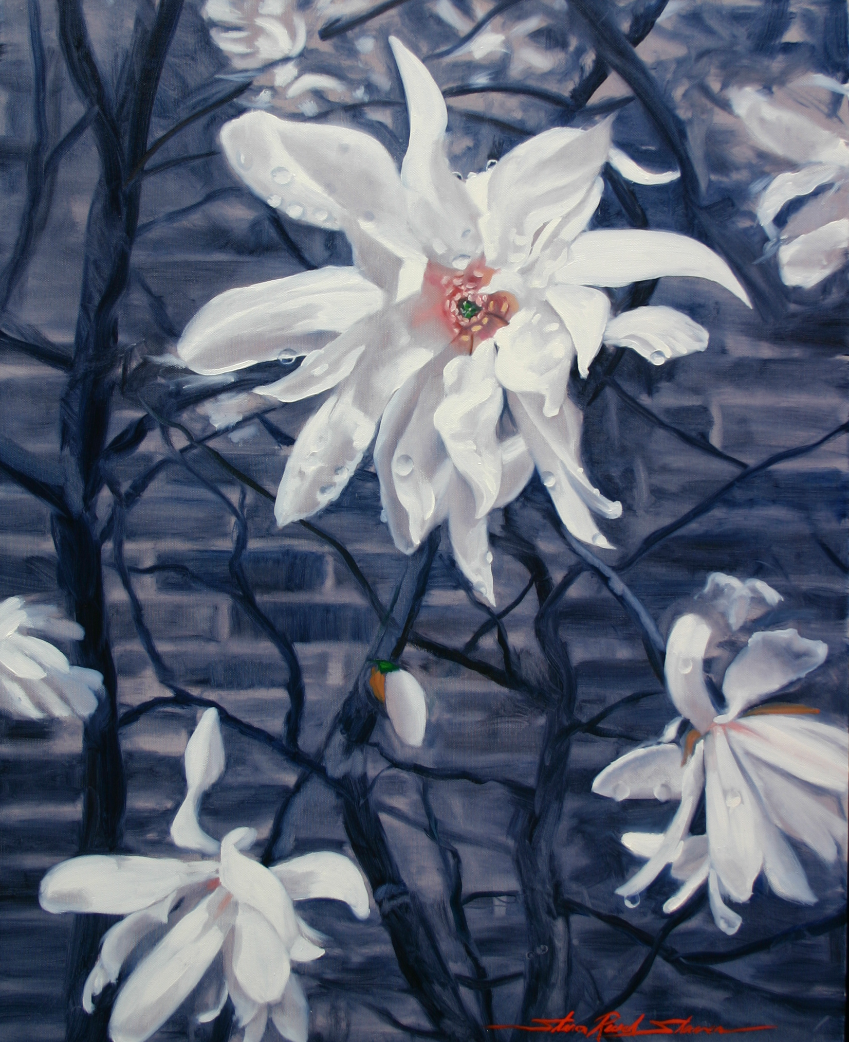 Start Magnolia Oil on Canvas