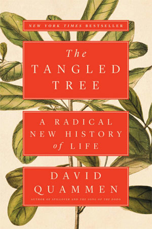 The Tangled Tree (bookcover)
