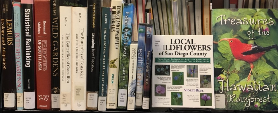 recent returns at the SDZG Library