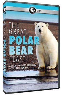 The Great Polar Bear Feast [DVD]