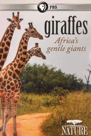 Giraffes DVD cover image