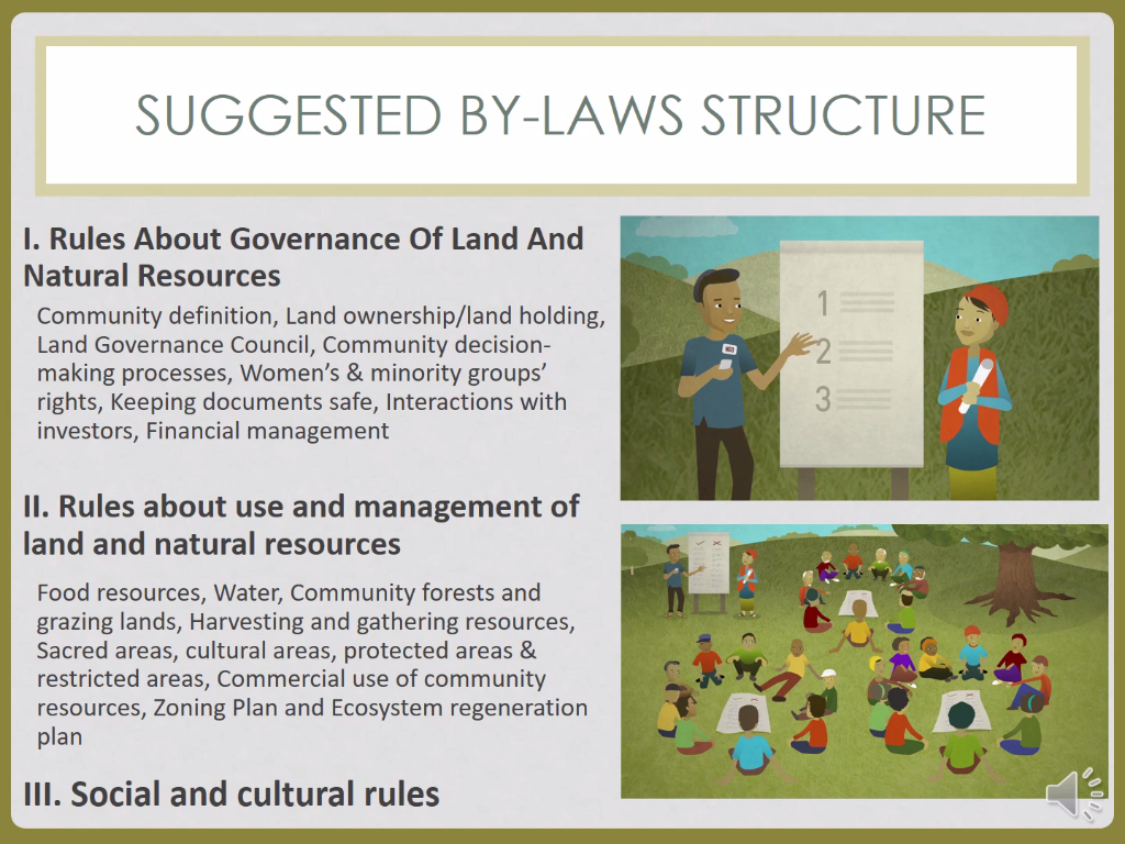 Using community by‑laws to protect indigenous and rural land rights