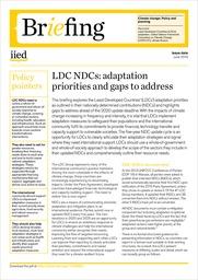 LDC NDCs: adaptation priorities and gaps to address