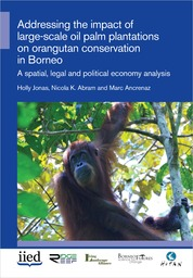 Addressing the impact of large-scale oil palm plantations on orangutan conservation in Borneo: A spatial, legal and political economy analysis
