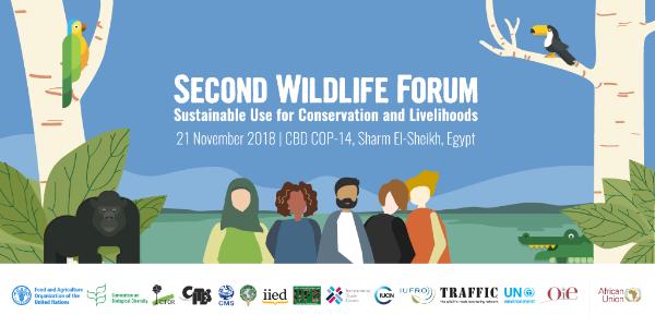 Second Wildlife Forum