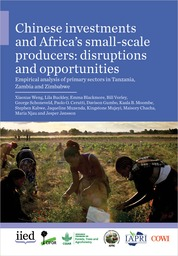 Chinese investments and Africa's small-scale producers: disruptions and opportunities