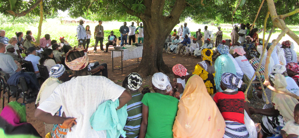Dialogue meeting beneath the trees © Duncan MacQueen/ IIED
