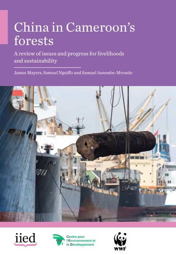 China in Cameroon's forests: a review of issues and progress for livelihoods and sustainability