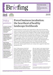 IIED Briefing papers