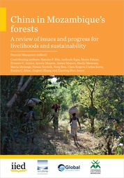 China in Mozambique's Forests
