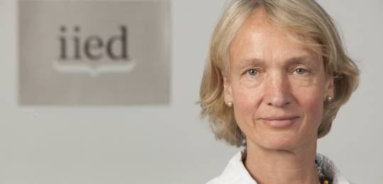 Camilla Toulmin to step down in 2015