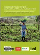 SSM Reforestation paper
