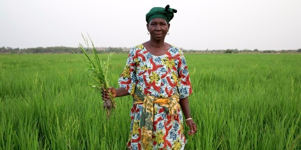 A small-scale farmer in Tanzania. Photo: GWI/ Mike Goldwater