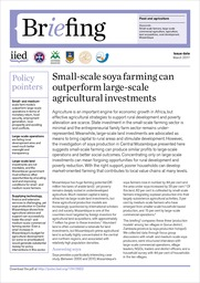 Small-scale soya farming can outperform large-scale agricultural investments