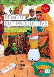 Remote but productive: Practical lessons from productive uses of energy in Tanzania