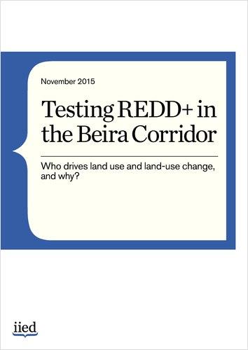 Thumbnail image of Testing REDD+