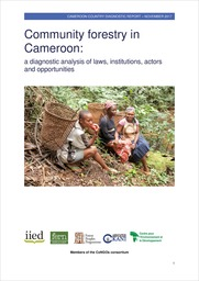 Community forestry in Cameroon: a diagnostic analysis of laws, institutions, actors and opportunities