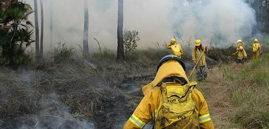 Pre-emptive controlled burning in Belize is preventing severe uncontrolled wild fires during the driest months