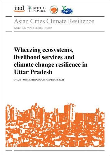 Thumbnail image of publication
