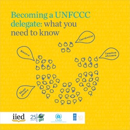 Becoming a UNFCCC delegate: what you need to know
