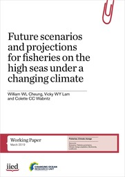 Future scenarios and projections for fisheries on the high seas under a changing climate