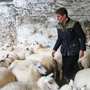 Shirley Clarke and her husband farm sheep in Scotland. Seventy per cent of Scotland's land is devoted to farming. The Clarkes have diversified by offering farm tours and have received awards for nature conservation (Sarah Wood via Flickr, Crown Copyright)