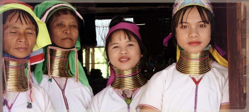 longnecks Myanmar