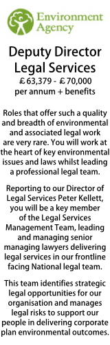 Environment Agency Deputy Director