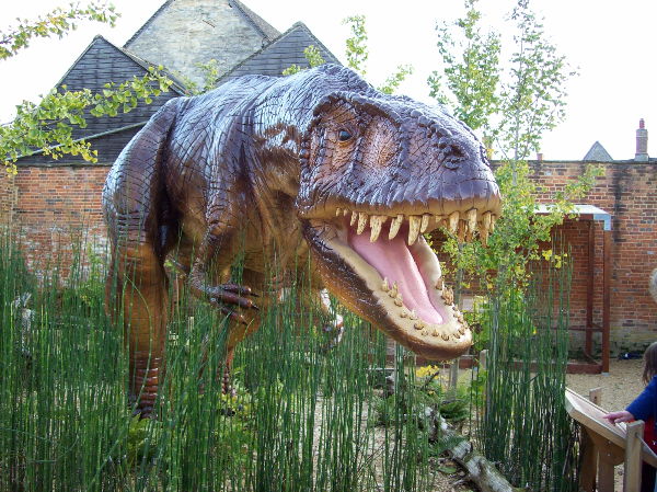 The dinosaur at the Oxfordshire Museum