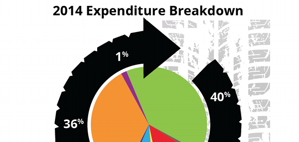 2014 expenditure chart