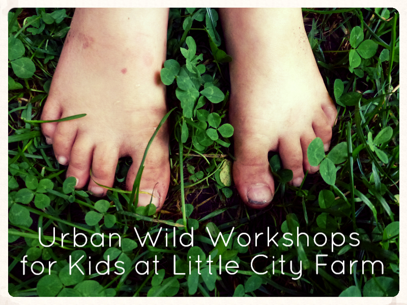 http://littlecityfarm.blogspot.ca/2015/09/urban-wild-workshops-for-kids-at-little.html