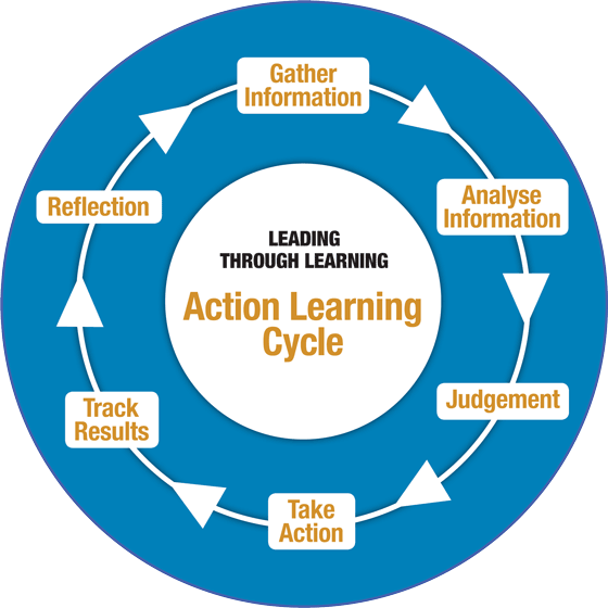 Action learning cycle graphic